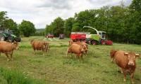 2nde professionnelle élevage en vue d'un Bac Pro 3 ans - dominante élevage
