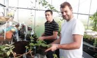 Bac Professionnel Productions Horticoles et Florales en 3 ans